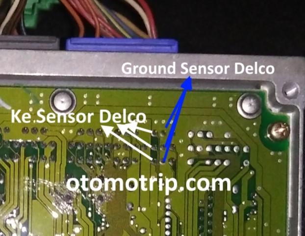posisi pin sensor delco honda city type z